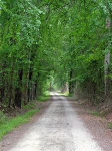 (3) a few miles south of Camden where an unpaved section of the historic path lies on private property.